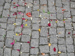Flower petals on cobblestone