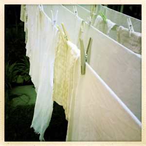 Diapers on Clothesline