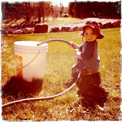 Sam filling bucket with water