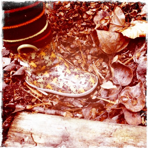 Sam's rubber boots