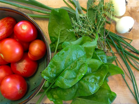 Tomatoes, spinach, & onions