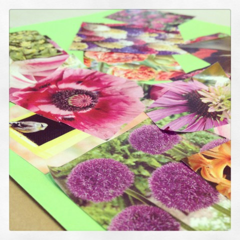 When you get tired of waiting for spring to arrive, you make pretty flower garden collages using old seed catalogues. Sam is getting good with a glue stick. That opens a door to a whole lot of new crafting time!