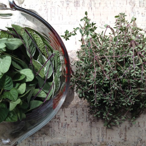 "A new weekly chore, harvesting fresh herbs from the garden (only just learning how to ""properly"" dry herbs... I've always removed & chopped leaves before drying, but apparently that's not the best method). Always learning."