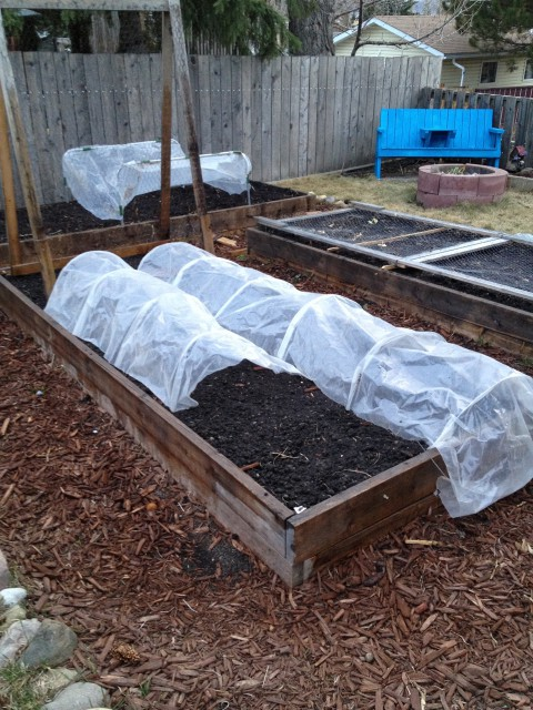 First a peek at how it all started this spring. Here are our three main garden beds in May, after the first planting.
