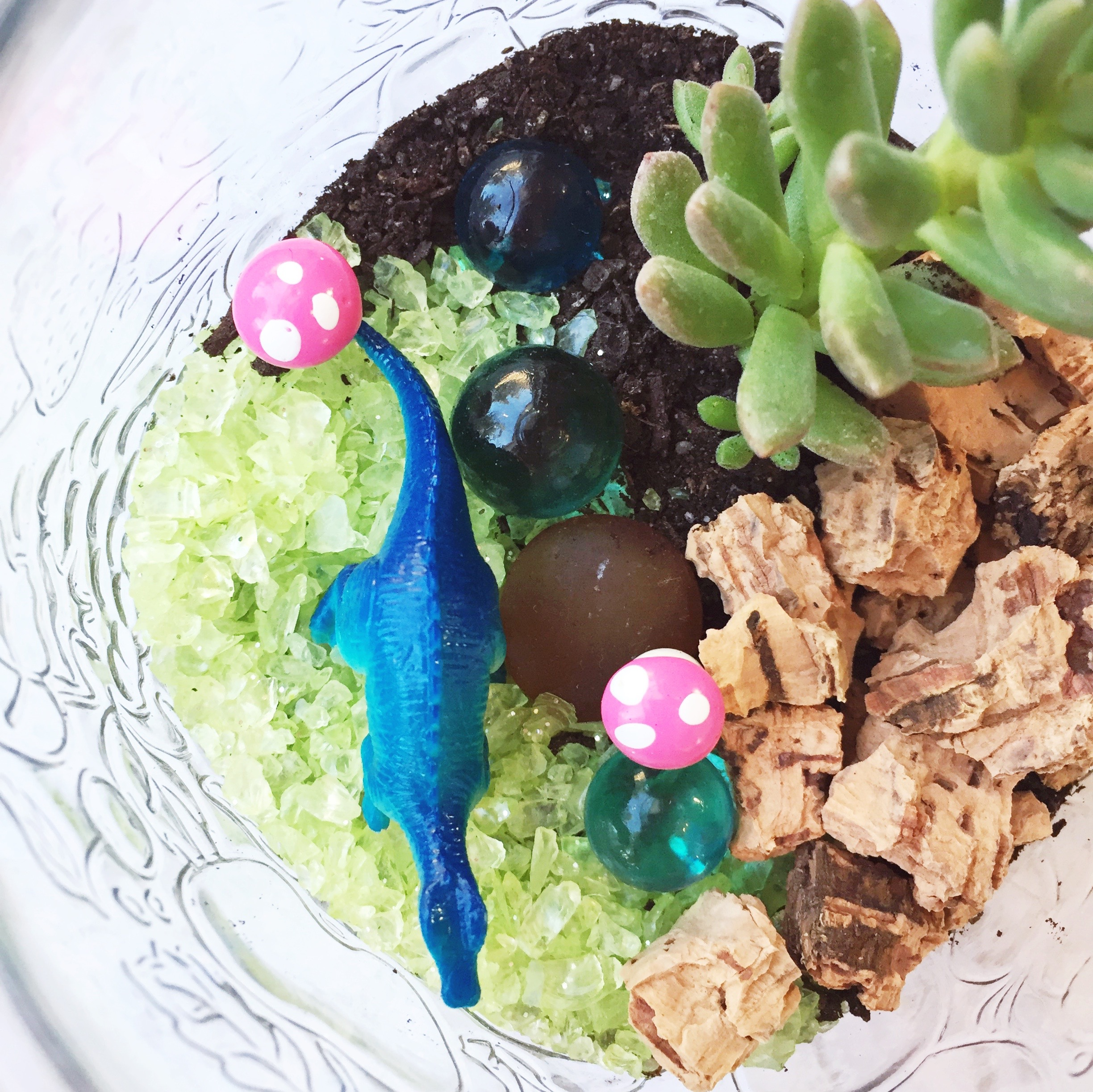 DIY Dino Terrariums ~ Succulent Terrarium Tutorial ~ Kid's Dino Birthday Party