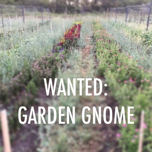 Wanted: Garden Gnome to work on a small Alberta farm